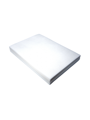 Oblea rectangular lisa 25 2hojas DINA4