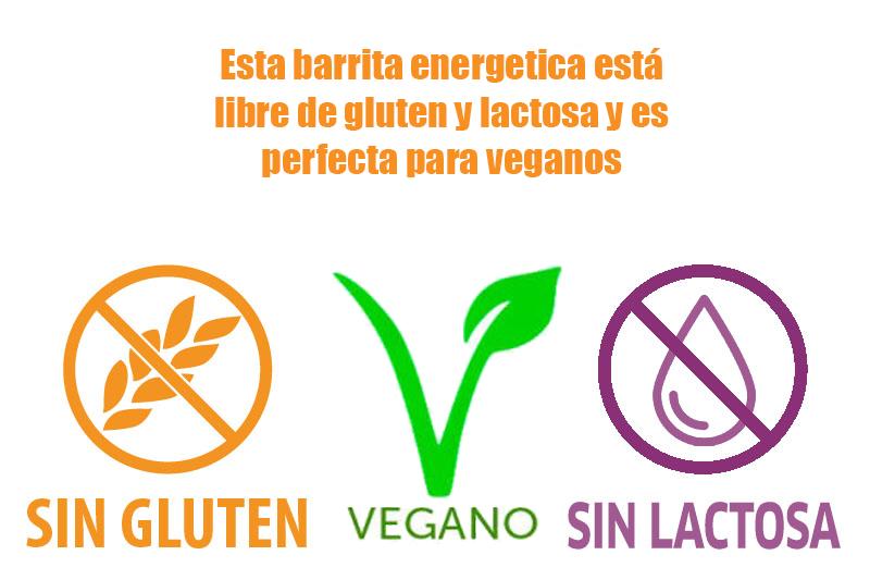 Turrón_Artesano_Jijona_singluten_sinlactosa_vegano